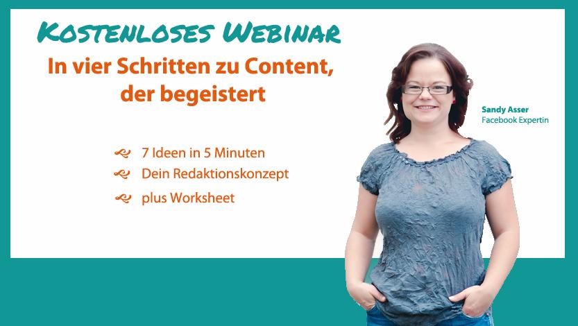 Kostenloses Webinar: In vier Schritten zu Content, der begeistert